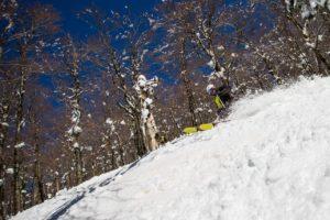 škola-skijanja-carving-skijaški-klub-carving-28